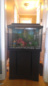 20 gallon tank and stand