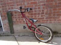 ***Spokey Joe - Tag-along-bike***