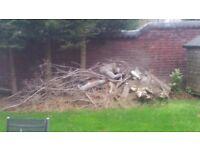 Mixture of cut Tree Logs inc tree stump / firewood