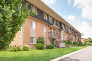 Recently renovated apts in great location- pets welcome!