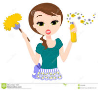 Swept Away Cleaning Service - We Love The Jobs You Hate!