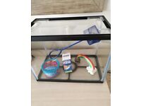 Starter fish tank with accessories