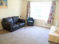 Lovely 1 bed flat to rent!