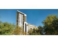 Part-Time Towel Attendant - 5* Jumeirah Carlton Hotel