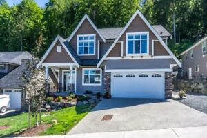 GORGEOUS BASEMENT ENTRY HOME IN A GREAT LOCATION!
