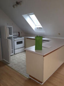 LOFT STYLE 2 BEDROOM FLAT STEPS FROM DAL, KINGS & DOWNTOWN