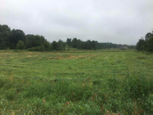 100 Acre Workable Land for Lease with Barns