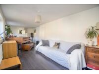 3 Bedroom Semi - RG8 - Pets allowed - large garden / private drive - light and airy
