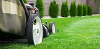 Elite Yard Works and Landscaping Services