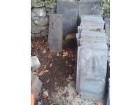 Reclaimed welsh slates (88 in total) - 31x62cm