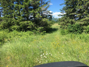 Land for Sale in Slate River Valley