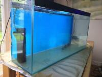 Aquarium 150 litres 100x50x30cm
