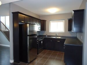 Newer 2 Beds/1 Bath Lower Level Duplex in West Pointe for Rent
