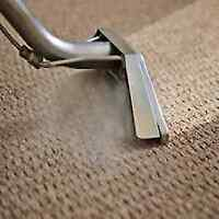$99 Carpet Cleaning