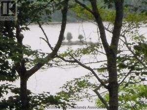 Cottage country lot for sale on Buck Lake Huntsville (15 minutes
