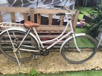 White Dutch bike