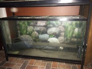 33 Gallon Aquariums For Sale