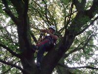 Tree surgeon, city and guilds/ garden maintenance