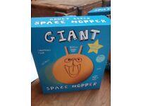 Giant Space Hopper