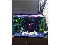 Aquaone aquaNano 60 aquarium fish tank