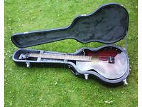 Rare Washburn AB40SH acoustic bass guitar. Stu Hamm signature model.