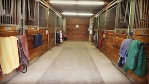Horse Boarding Close to UOG *3 stalls Available* both barns open