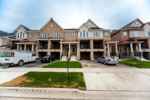 Brand New Townhome for Rent in West Oak Trails, Oakville!