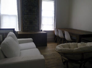 Beautiful 2 bdrm + den available downtown Sept 1 - dog-friendly