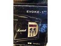 Collectable pure Evoke Marshall radio