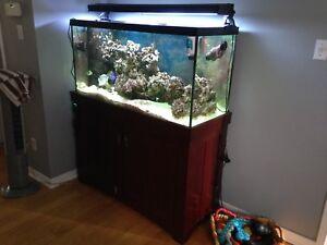 90 gallon aquarium and accessories
