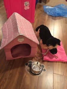 Build-a-Bear Dog, Doghouse and accessories