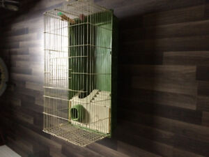 Rabbit cage and starter kit