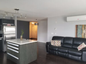Roommate wanted in 2BR 2WR East End Condo -Available AUG.30,2017