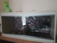 3 ft vivarium £30 ono