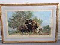 Elephants & Egrets by David Sheperd Framed Limited Edition Print 188/1300 1987