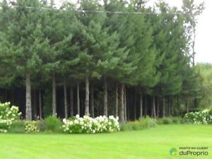 540 000$ - Terre à bois à vendre à Bury