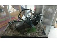 Small fish tank with heater, thermometer, stones