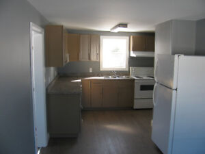 Newly Renovated 2 Bedroom House plus Den, in Bible Hill