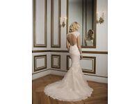 Beautiful Alexander 8841 mermaid wedding dress for sale (never been warn)