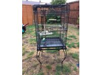 Parrot cage vgc black including bars and dishes . Lovely design.