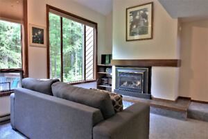 Mt. Baker Lodging - Condo #14 - FIREPLACE, D/W, W/D, SLEEPS-6!