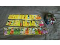 Pokemon cards over 250 with carry case