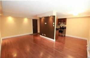 Remodelled condo in beautiful Norwood flats!