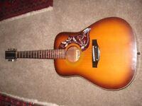 12 string guitar. Acoustic.