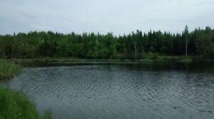 Terrain avec lac