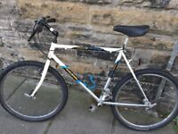 Mountain Bike - Discovery Hyperglide Raleigh whitr