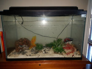 20 Gal Fish tank Kit  Aquarium