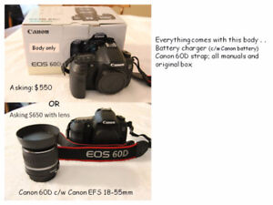 Canon 60D and lenses