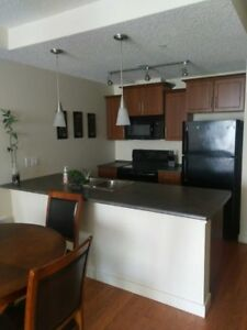 Fully Furnished One bedroom Condo at the Vistas, Timberlea