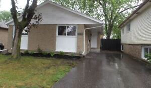 Newly renovated, clean and modern house w/ all new appliances